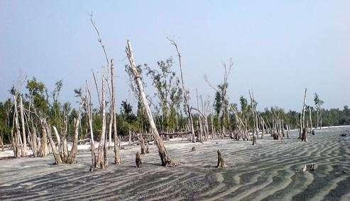 Katka-Sundarban